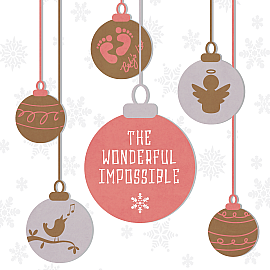 The Wonderful Impossible