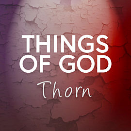 Things of God: Thorn - A Lenten Reading