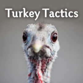 Turkey Tactics