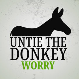 Untie the Donkey: Worry