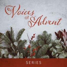 Voices of Advent Script Bundle