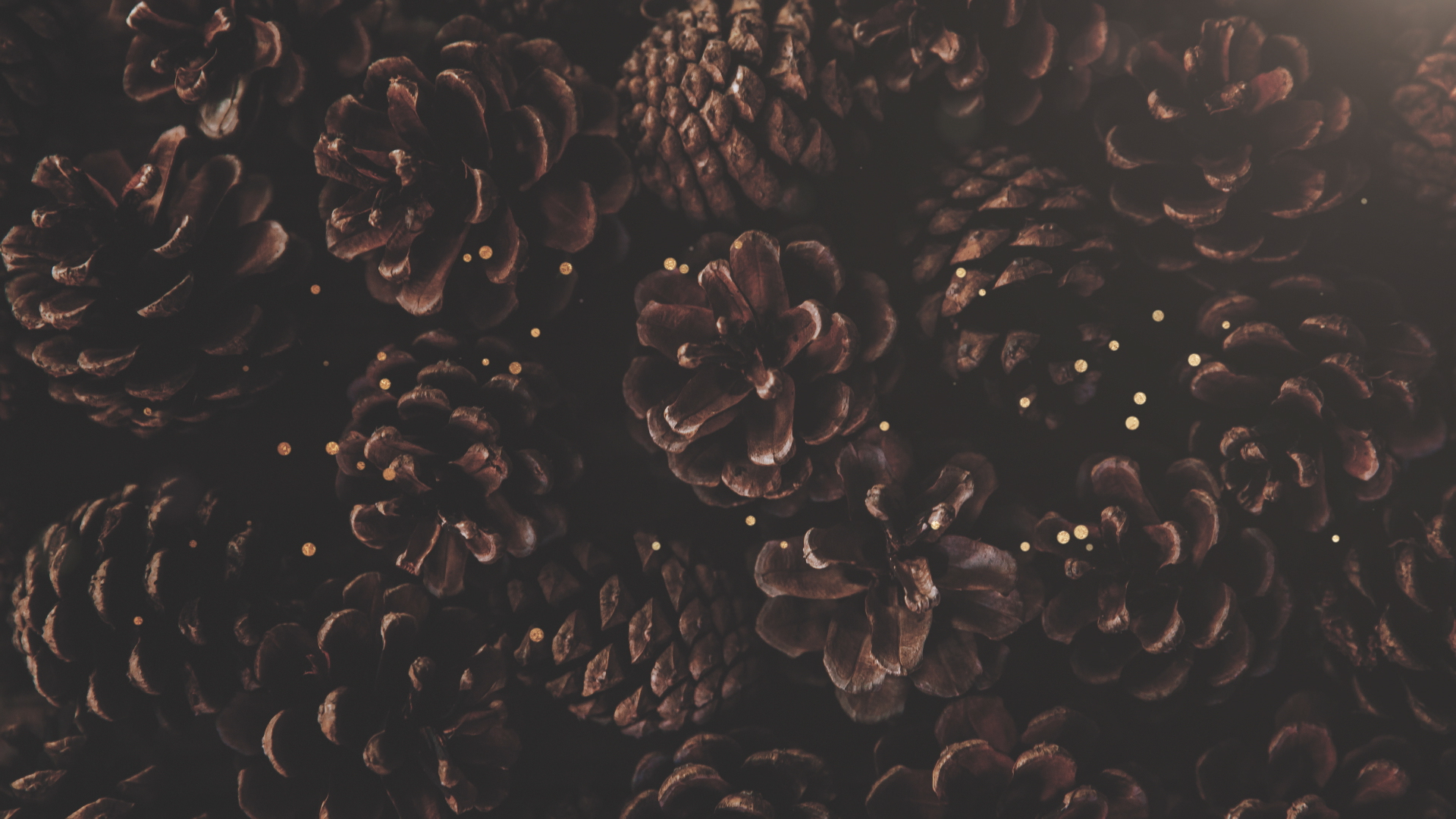 Christmas Texture.Christmas Textures Pinecones Motion Background