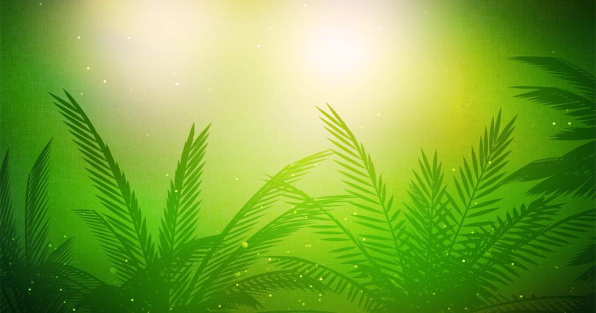 Palm Sunday Vol 2 Background 1 Motion Background