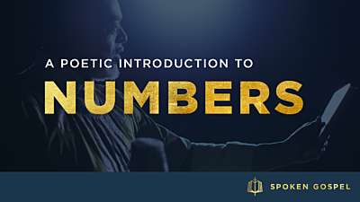 The Book of Numbers: An Introduction