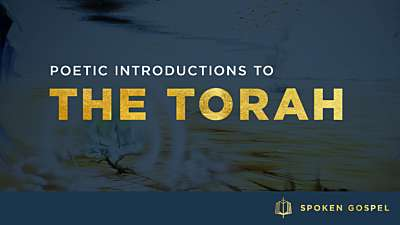The Torah: Collection