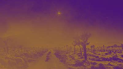 Amber Christmas Road