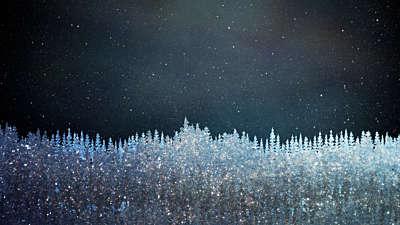 Christmas Sparkle 12