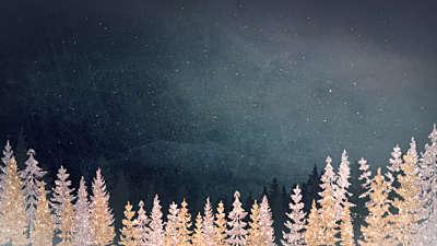 Christmas Sparkle 1