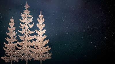 Christmas Sparkle 4