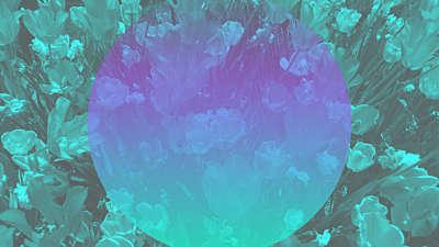 Kaleida Spring 02