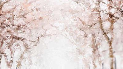 Let It Snow Canopy