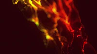 Pentecost Flames Blaze