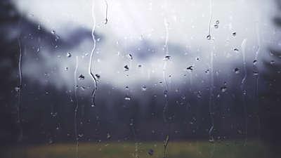 Rainy Day View