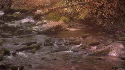 Rivers 10