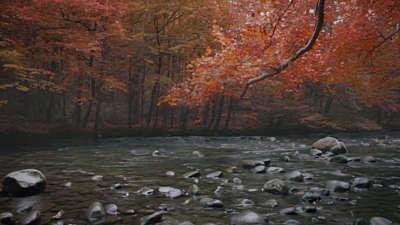 Rivers 4