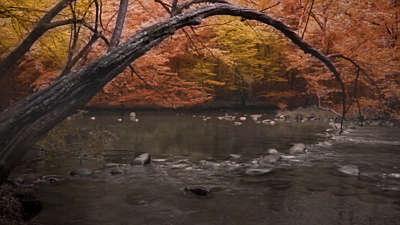 Rivers 7