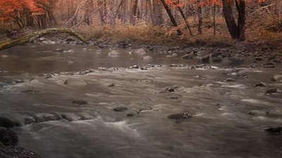 Rivers 8