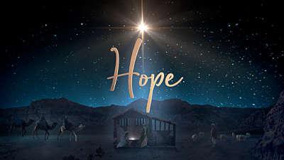 Starry Night Nativity Hope