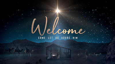 Starry Night Nativity Welcome