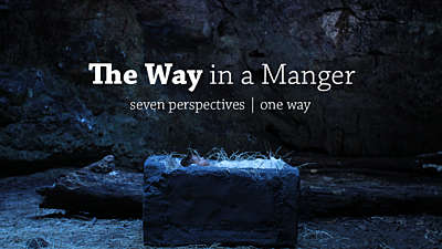 The Way in a Manger