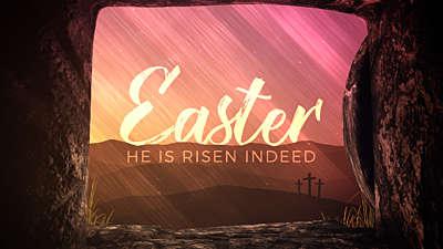 Vivid Fibers Easter