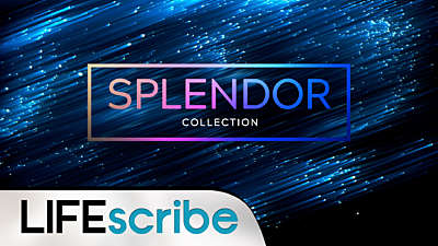 Splendor Collection