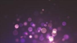 Christmas Elegance Purple