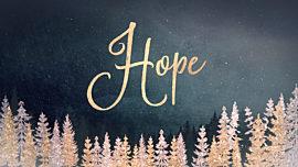 Christmas Sparkle Hope