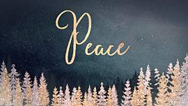 Christmas Sparkle Peace