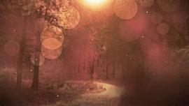 Fall Background 1 Loop Vol4