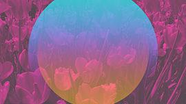 Kaleida Spring 01