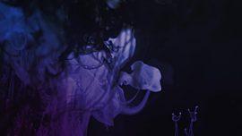 Ink Rise Lavender