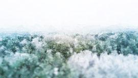 Let It Snow Above