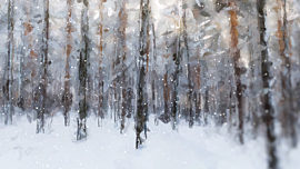 Let It Snow Forest