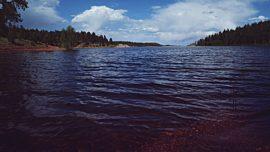 Nature Walk Panorama