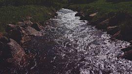 Nature Walk Stream