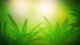 Palm Sunday Vol 2 Background 1