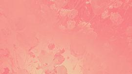 Radiant Gradient Flowers 01