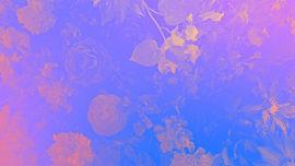 Radiant Gradient Flowers 02