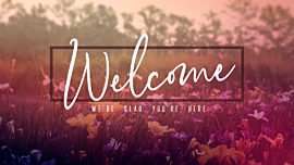 Wildflower Welcome