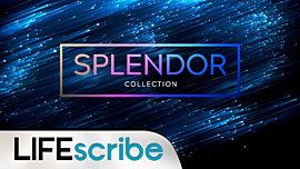 Splendor Collection