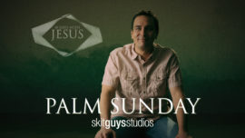 40 Days: Palm Sunday